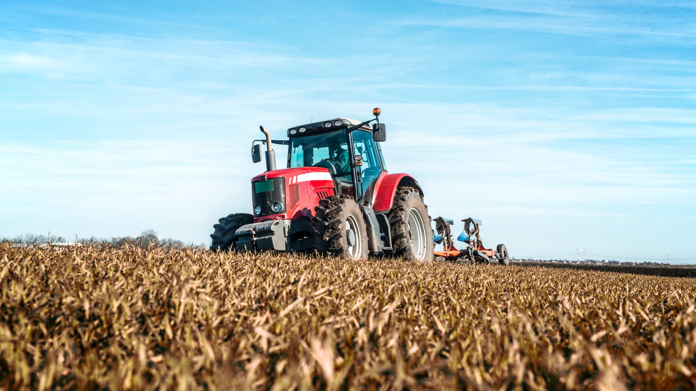 Agricultura E Pecuária: Relação E Resultados