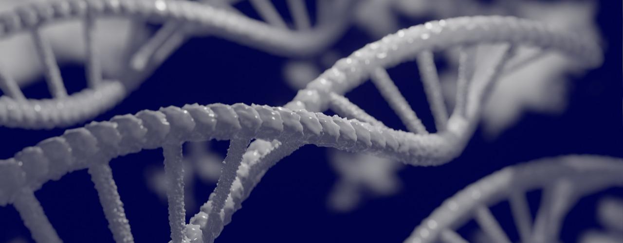 Melhoramento Genético de Bovinos No Brasil