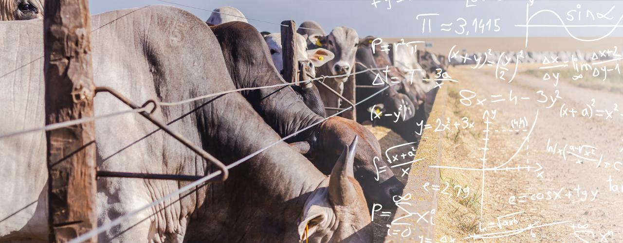 Teoria Dos Jogos Na Pecuária: Análise E Aplicação