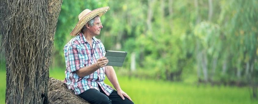 Armazenamento De Dados Em Aplicativos De Gestão Rural