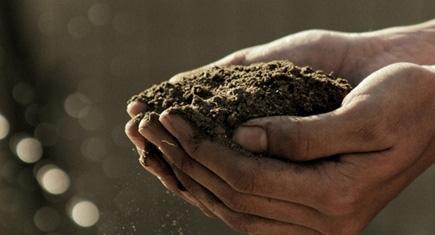 A agroindustria no Brasil