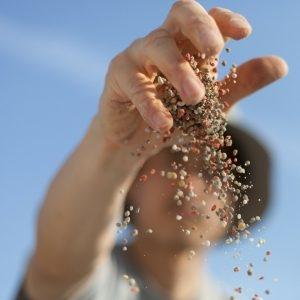 Agronegócio e agropecuária