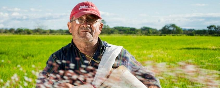 Otimização do manejo na pecuária em fazendas brasileiras