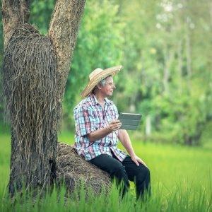 Produção rural e moderna